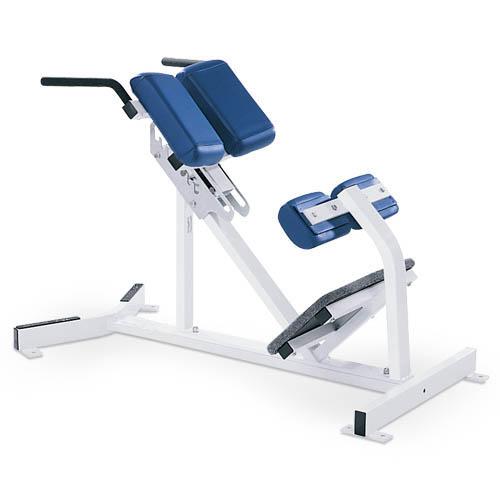 Ławeczka do ćwiczeń mięśni grzbietu D51
